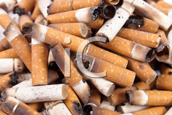 Royalty Free Photo of Cigarette Butts