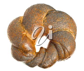 Tasty bagel with poppy seeds isolated over white