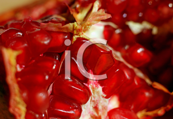 close-up of pomegranate fruit