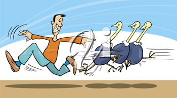 Royalty Free Clipart Image of a Man Running With Ostriches Behind Him
