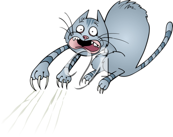 Royalty Free Photo of a Frightened Cat