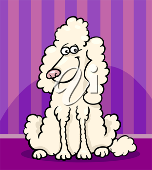 Cartoon Illustration of Funny Purebred White Poodle against Wall at Home
