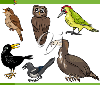 Cartoon Illustration of Funny Birds Set