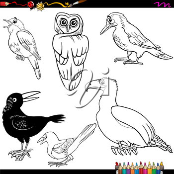 Coloring Book Cartoon Illustration of Funny Birds Characters Set