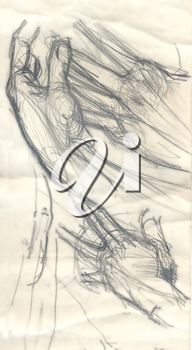 Hand drawn illustration of a composition with hands, original artistic sketch over an obsolete paper