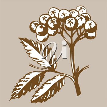 Royalty Free Clipart Image of a Berry Branch