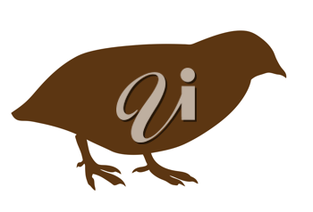 Royalty Free Clipart Image of a Quail