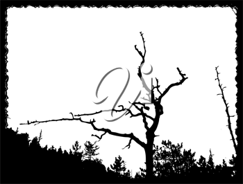 Royalty Free Clipart Image of an Old Tree