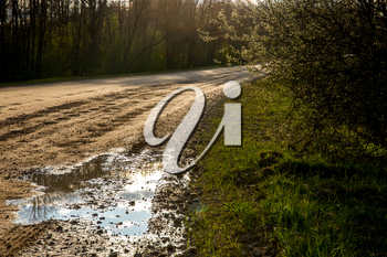 Rural landscape with empty countryside dirt wet road. Dirt road leading through forest in Latvia. Puddles on the country road in Latvia.