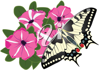 Royalty Free Clipart Image of a Butterfly on a Flower