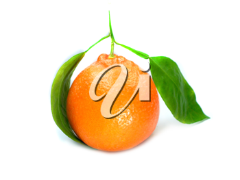 Fresh orange with green leaves isolated on a white background