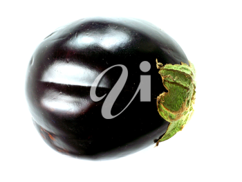 Royalty Free Photo of an Eggplant