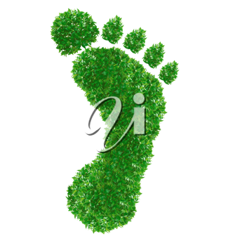 Green footprint Sign made from grass isolated on white.