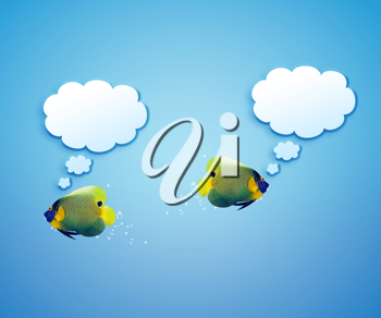 angelfish faces as social network with speech bubbles.