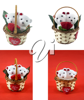 A cute white teddy bears with with rose in basket.