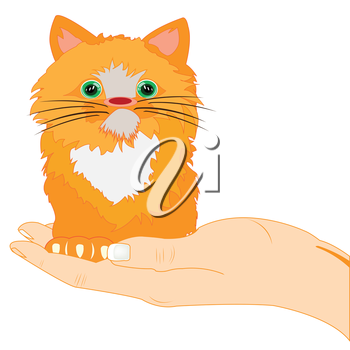 The Small redhead kitty on palm of the person.Vector illustration