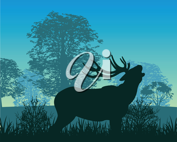 The Wildlife deer in wood in the morning.Vector illustration
