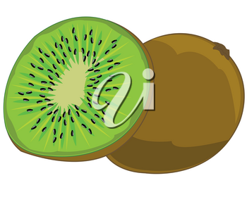 Ripe tropical fruit kiwi on white background is insulated