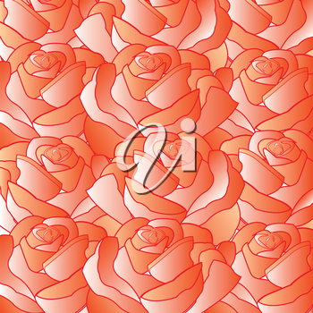 Colorful background from flower rose red color