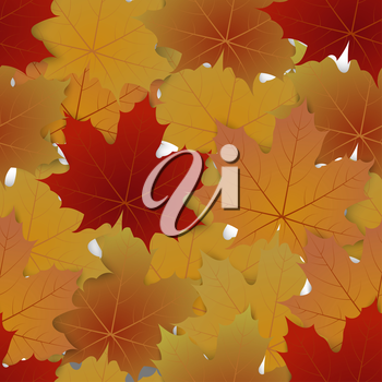 Seamless pattern from autumn maple leaves