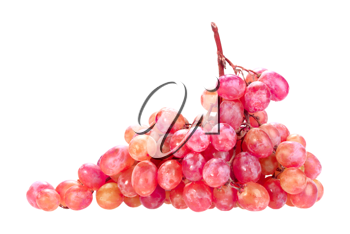 Single bunch of pink grape. Close-up. Isolated on white background. Studio photography.