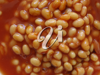 Detail of baked beans in tomato sauce - useful as a background
