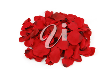Royalty Free Photo of a Pile of Rose Petals