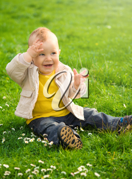 Royalty Free Photo of a Baby in a Meadow