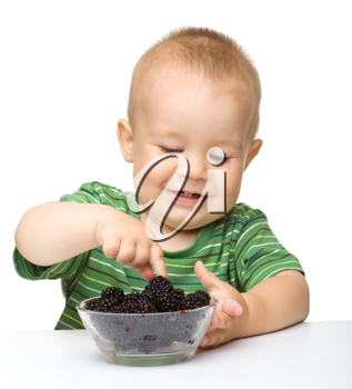 Royalty Free Photo of a Little Boy Eating Blackberries