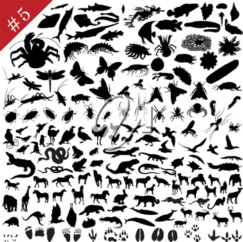 Royalty Free Clipart Image of Bug Silhouettes
