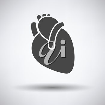 Human heart icon on gray background, round shadow. Vector illustration.