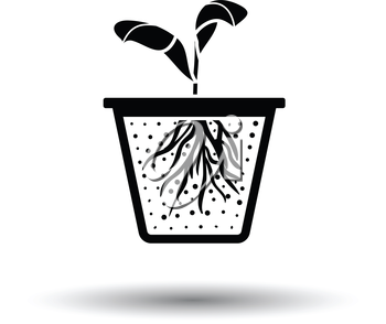 Seedling icon. White background with shadow design. Vector illustration.
