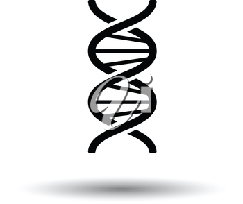 DNA icon. White background with shadow design. Vector illustration.
