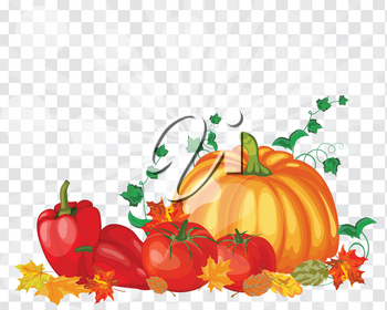 Thanksgiving Day Greeting Card. Design Consist From Pumpkin, Pepper, Tomato, Maple Leaves Over Transparency (alpha) grid With Sun Rays and Flares.  Very Cute and Warm Colors. Vector illustration.