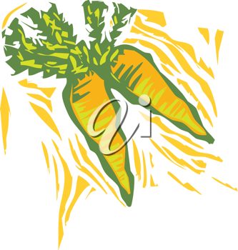 Royalty Free Clipart Image of Carrots