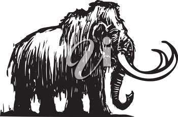 Royalty Free Clipart Image of Woodcut Style of a Woolly Mammoth