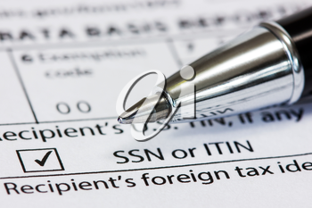 Close-up pen on the US tax form