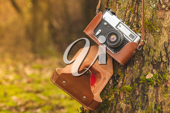 Film camera hanging on a tree in natural outdoor