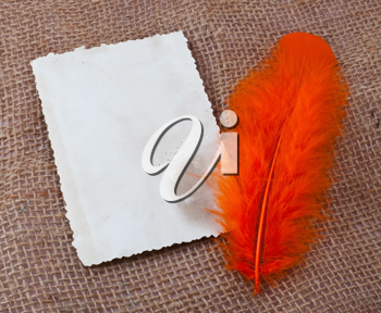 Orange feather and old blank card on sack material
