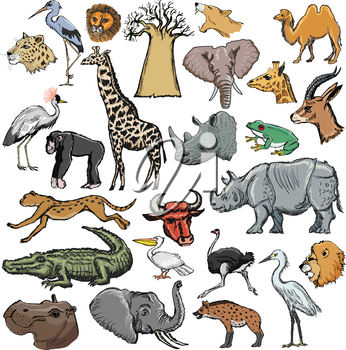 set of animals with elephant, crocodile, lion, rhinoceros, giraffe