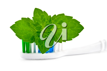 A toothbrush with a sprig of mint isolated on white background
