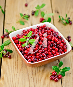 Ripe red lingonberries in a bowl with a sprig of berries and leaves on the background of wooden boards