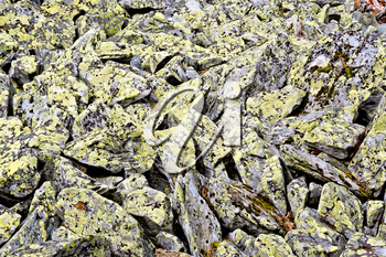 Pile of crumbling stones with yellow mold