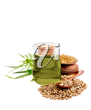 Hemp oil in glass jar, a pile of cereals with a spoon and flour in a bowl, green cannabis leaves isolated on white background