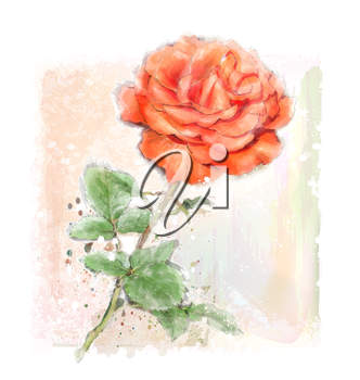 imitation of watercolor illustration of red rose