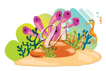 illustration of a sea animals on a white background