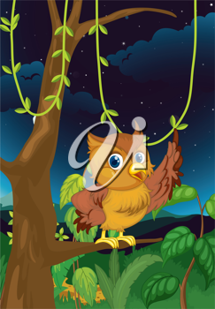 Illustration of an owl at night