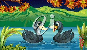 Illustration of two ducks in the river