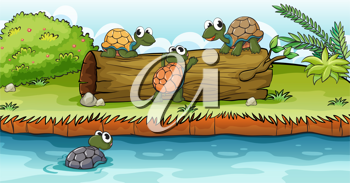 Illustration of turtles on a dry wood in a beautiful nature