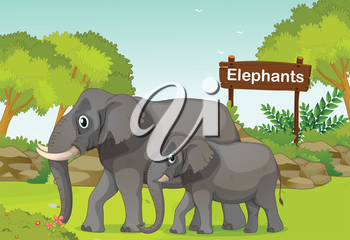 Illustration of the two elephants with a wooden sign board at the back